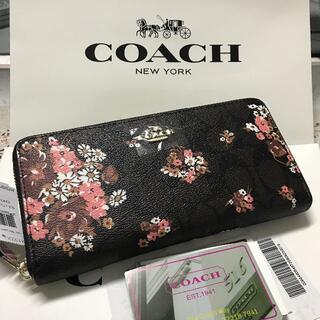 COACH - COACH 新品未使用 coach コーチ 長財布F31520