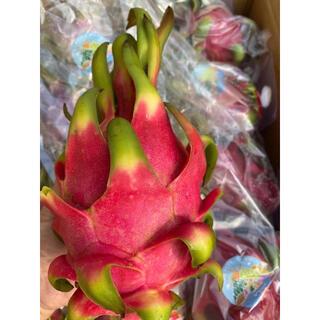 ベトナム産 赤いドラゴンフルーツ 20個入り10kg(フルーツ)