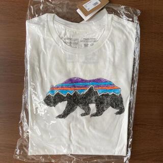 patagonia - パタゴニア フィッツロイ tシャツ