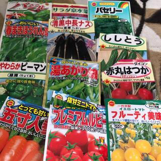 夏野菜 種子セット 小分け 12種類(その他)