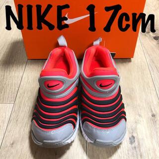NIKE - 17 ナイキ 運動靴 ナイキダイナモ 子供用 ダイナモ ナイキ スニーカー