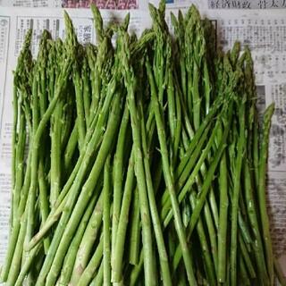 佐賀県産グリーンアスパラ(細め)1.8キロ(訳あり)(野菜)