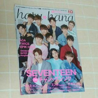 セブンティーン(SEVENTEEN)のSEVENTEEN ハル*ハナ 雑誌(アート/エンタメ/ホビー)