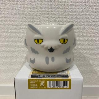 ハイキュー!! 3Dカップ ボクトフクロウ 木兎光太郎 梟谷