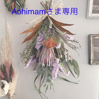 Aohimamさま専用 プロテアカーニバルとフォルモーサ No.134(ドライフラワー)