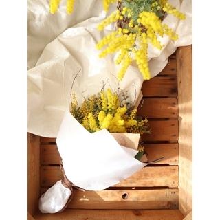 『ありがとう』を花に添えて。ミモザの日。ミモザスワッグ。ドライフラワースワッグ(ドライフラワー)