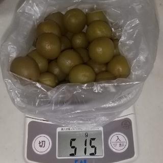 梅酒の梅の実  約500g+しわしわ梅約200g+ブランデー梅200g(漬物)