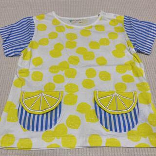 sense of wonder - シトラスTシャツ110