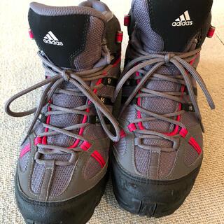 アディダス(adidas)のadidas トレッキングシューズ25.0 レディース(登山用品)