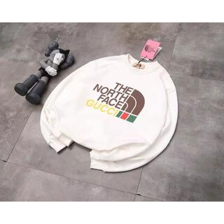 THE NORTH FACE - 人気 the north face  パーカー M-XL