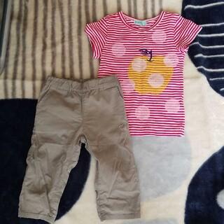 ハッカキッズ(hakka kids)のハッカキッズ Tシャツ パンツ 100(Tシャツ/カットソー)