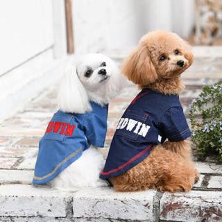 エドウィン(EDWIN)のEDWIN 犬 服 夏服 クール 新品(犬)