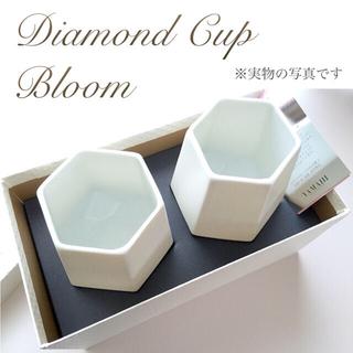 BLOOM - 新品箱付き◆ダイヤモンドカップ ペアグラス 白 美濃焼