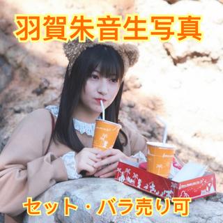 モーニングムスメ(モーニング娘。)のモーニング娘'21 羽賀朱音 生写真49枚セット(アイドルグッズ)