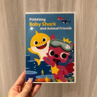 ピンキッツ Baby Shark DVD