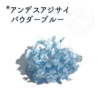 アンデスアジサイ パウダーブルー 1枝(プリザーブドフラワー)