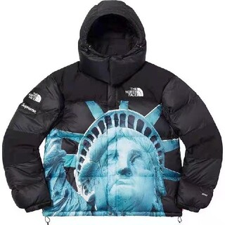 THE NORTH FACE - 【M】supreme the north face バルトロ
