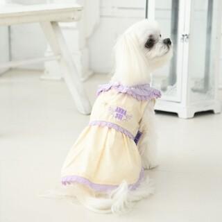 アナスイ(ANNA SUI)の【ANNA SUI】レースカラーワンピ XS アイボリー(犬)