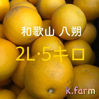 和歌山産 八朔 2Lサイズ 5キロ(フルーツ)