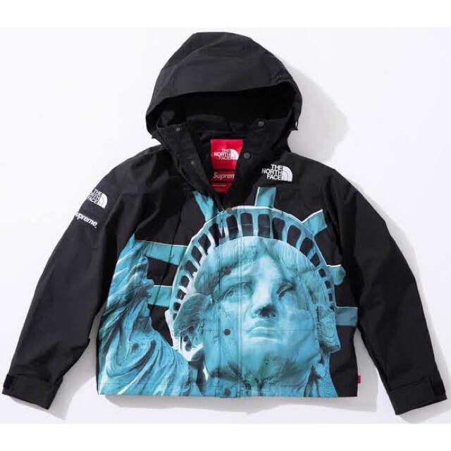 Supreme(シュプリーム)の※お菓子ちゃん様専用※ シュプリーム マウンテンパーカー 自由の女神 L メンズのジャケット/アウター(マウンテンパーカー)の商品写真