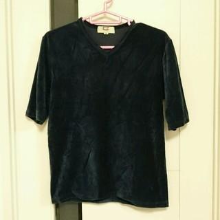エルメネジルドゼニア(Ermenegildo Zegna)のゼニアEZ ベロアTシャツ(Tシャツ/カットソー(半袖/袖なし))