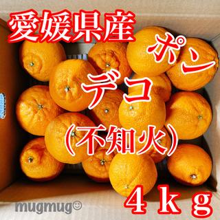 愛媛県産  デコ ( 不知火 )4kg《家庭用》(フルーツ)