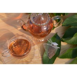 有機グァバ葉100%使用 美味しい秘密は自家焙煎♪「土佐國グァバ茶」5包入(茶)