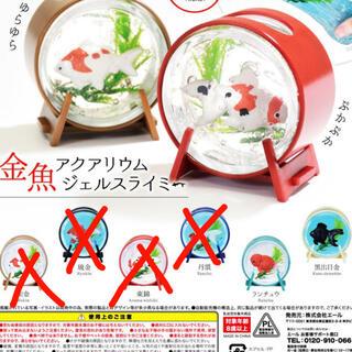 金魚アクアリウム 2個セット(ミニチュア)