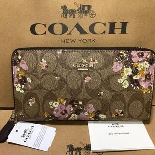 COACH - ◇【新品 未使用品】COACH 長財布 シグネチャー F31651