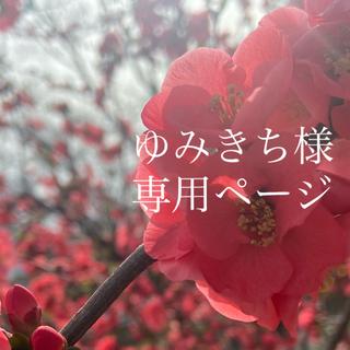 ゆみきち様専用ページ(その他)