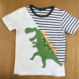 kladskap - クレードスコープ 恐竜Tシャツ 110
