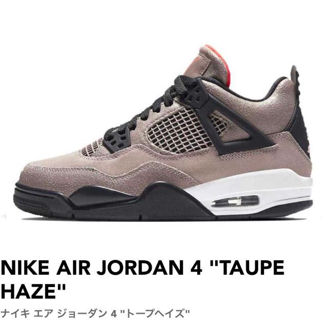 NIKE(ナイキ)のNIKE AIR JORDAN4 taupe haze トープヘイズ メンズの靴/シューズ(スニーカー)の商品写真