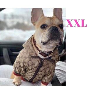 XXLサイズ 犬服 ジャケット ジャンパー わんこ服 大きめサイズ