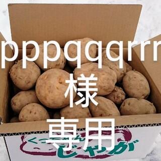 北海道産 越冬じゃが芋 農家直送(野菜)