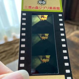 ジブリ(ジブリ)の三鷹の森ジブリ美術館フィルム入場券 となりのトトロ(美術館/博物館)