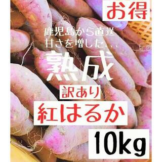 【訳あり】鹿児島産 熟成 紅はるか10kg サツマイモ さつまいも 送料無料 (野菜)
