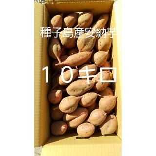 SS10キロ(野菜)