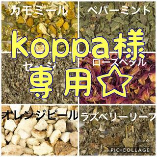 koppa様 専用 ハーブ6種 各30g(茶)