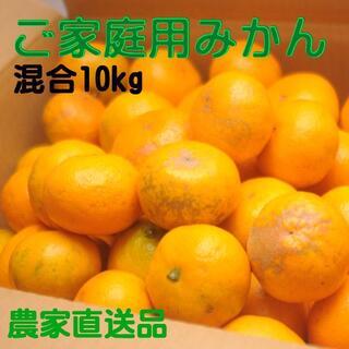 しもつ蔵出しみかん・混合10kg(訳あり品)和歌山県から農園直送!(フルーツ)