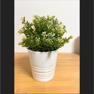 イケア(IKEA)のIKEA フェイクグリーン/FEJIKA フェイカ/鉢付き(その他)