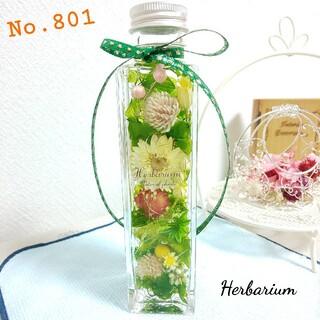 ハーバリウム No.801 ボタニカルグリーン(その他)