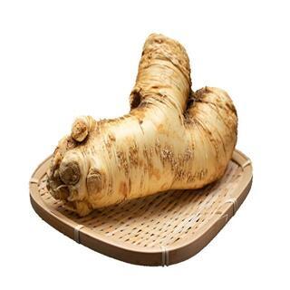 北海道 山わさび 1kg ホースラディッシュ 西洋わさび 送料無料 野菜(野菜)