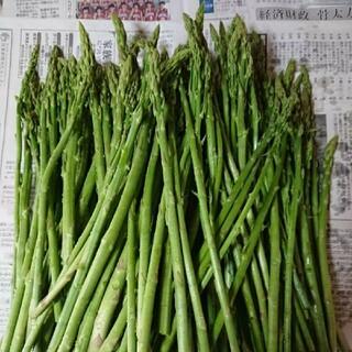 佐賀県産極細グリーンアスパラ1.8キロ(訳あり)(野菜)