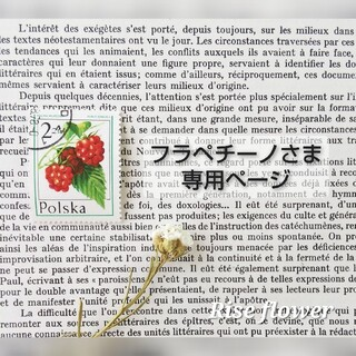 フラペチーノさま専用ページ(ドライフラワー)