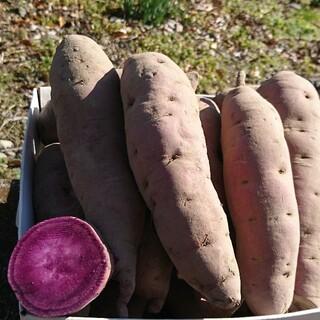 農家直送パープルスイートロード約3㎏送料込(野菜)