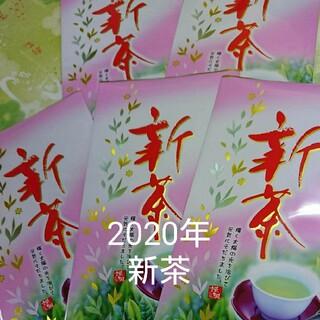 静岡県産 深蒸し茶 100g5袋 静岡茶(茶)