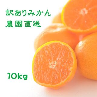 ご家庭用★蔵出しみかん10kg(しもつ産)混合サイズ 和歌山県から農園直送!(フルーツ)