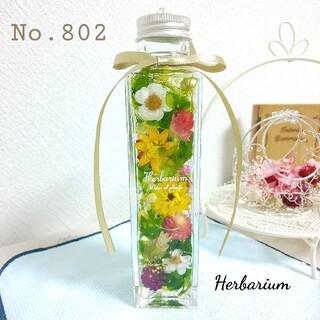 ハーバリウム No.802 グリーンガーデン(その他)