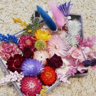 花材 花材セット ドライフラワー プリザーブドフラワー リース等に!(ドライフラワー)