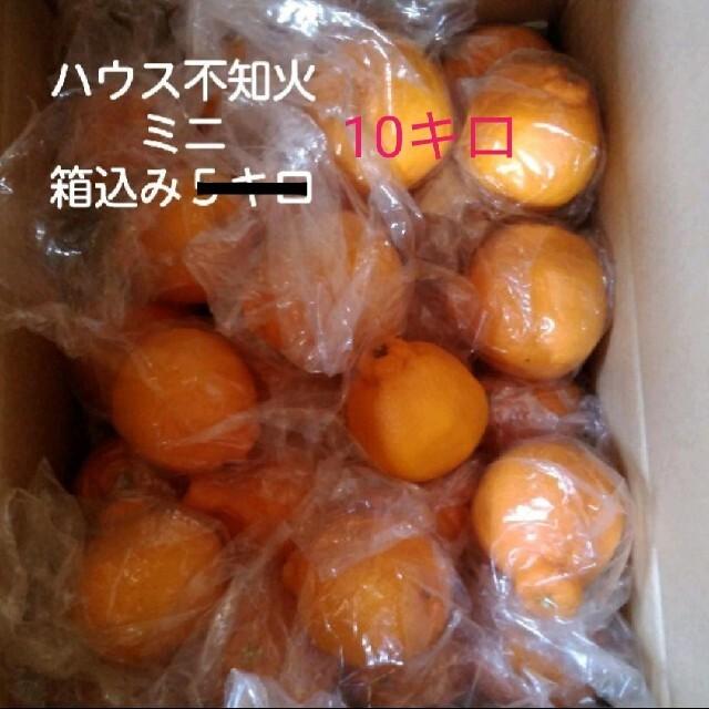 ミニ不知火 箱込み10キロ 食品/飲料/酒の食品(フルーツ)の商品写真